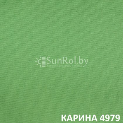 Рулонные шторы Карина 4979