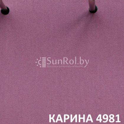 Рулонные шторы Карина 4981