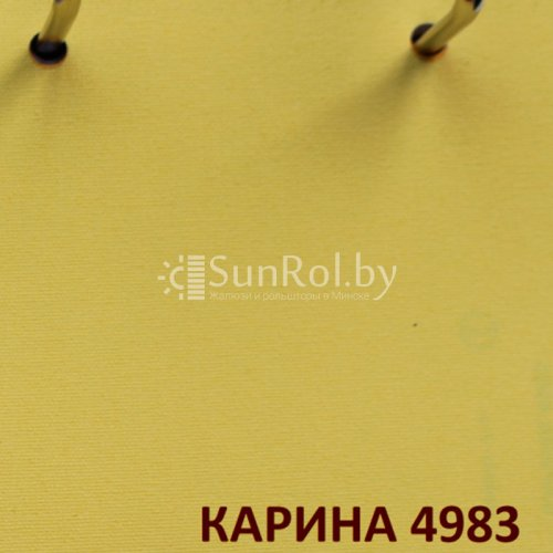 Рулонные шторы Карина 4983