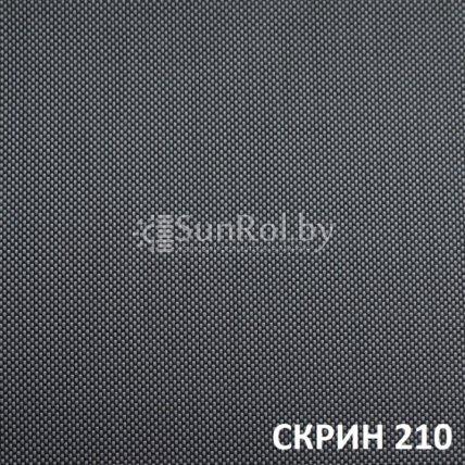Рулонные шторы Скрин 210